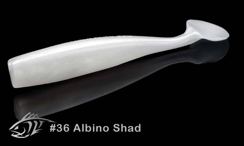 36 Albino Shad